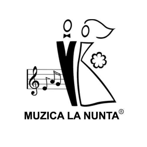 Muzica La Nunta Dj Muzica Sonorizare Lumini Pentru Nunta în Baia